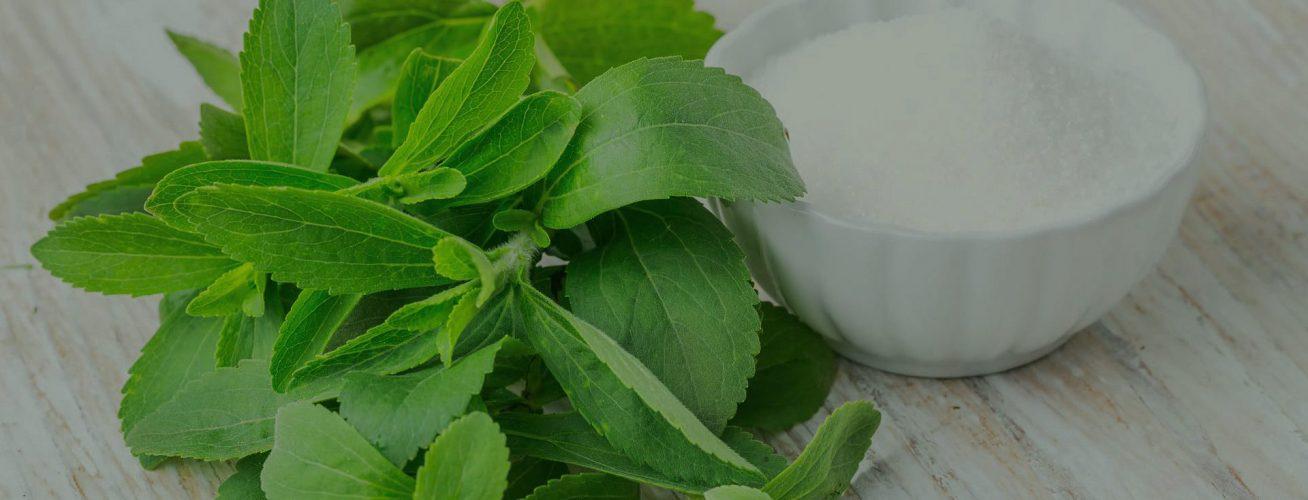 SunStevia 100% stevia naravno sladilo