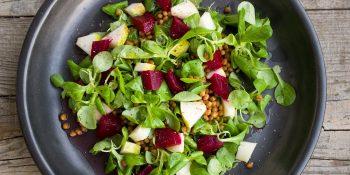 Vegetarijanska prehrana: začetni vodnik in primeri obrokov