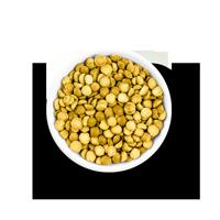Beljakovine iz fermentiranega graha