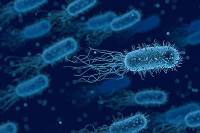 Zagotovljeno število dobrih bakterij