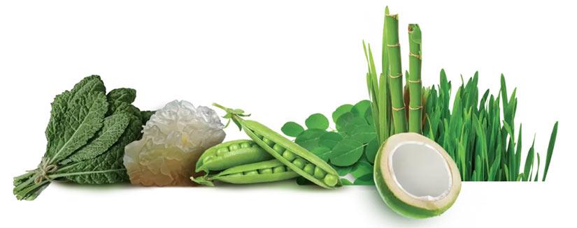Aktivne učinkovine v izdelku Beauty Greens kolagen booster