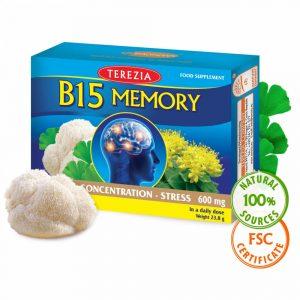 B15 Memory z medicinsko gobo resasti bradovec Terezia