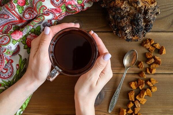 Čagin čaj iz Altaja