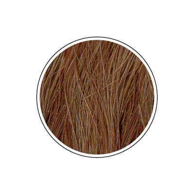 Naravna barva za lase Radico PEPELNATO BLOND - barvni krog