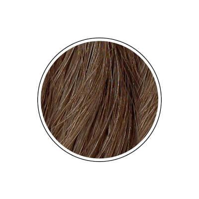 Naravna barva za lase Radico TEMNO PEPELNATO BLOND - barvni krog