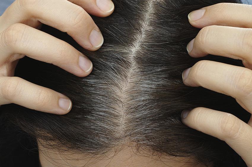 Naravne barve Radico - prekrivanje sivih las
