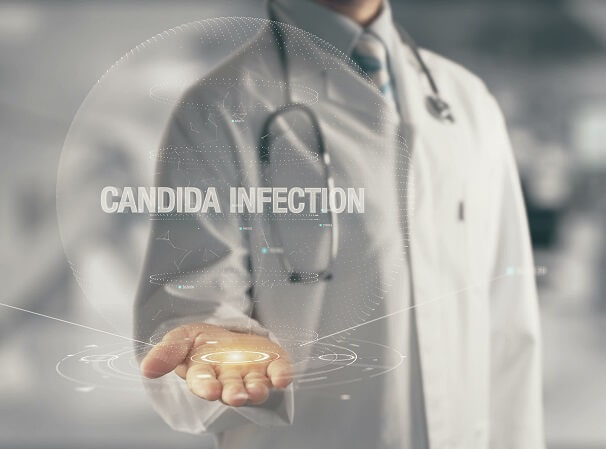 Kandida