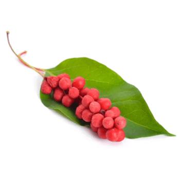 Šisandra jagode - NutriHolis MenoHelp